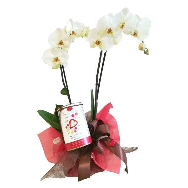 Picture of Orquídea dos namorados